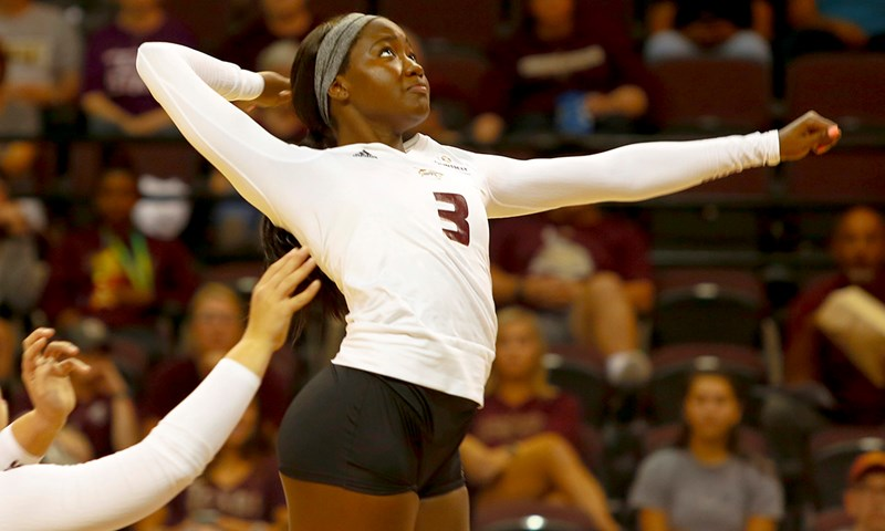 Volleyball News and Notes - October 16